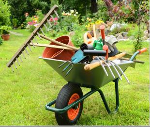 pulizie e giardinaggio